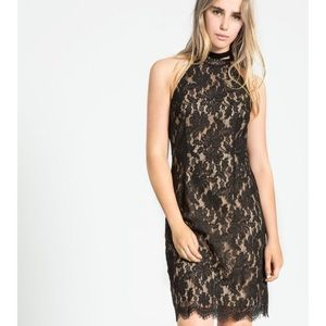 Lace high neck sheath dress with open seam back